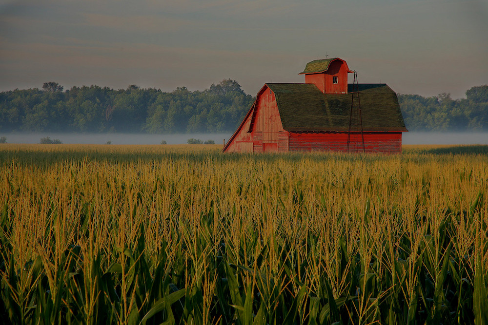 farm and crop insurance Bellingham WA