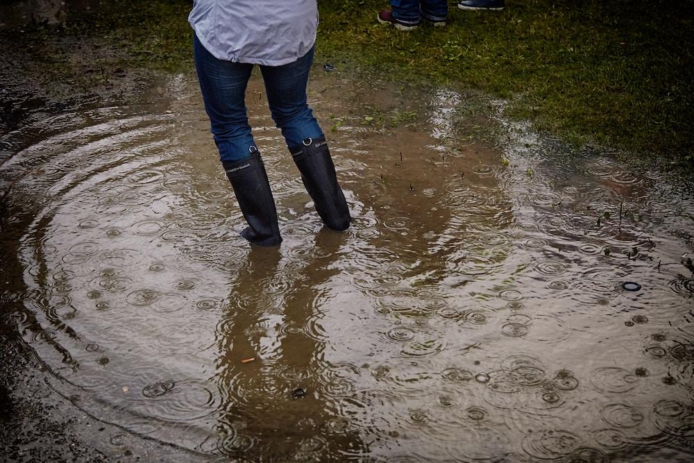 flood insurance Bellingham WA